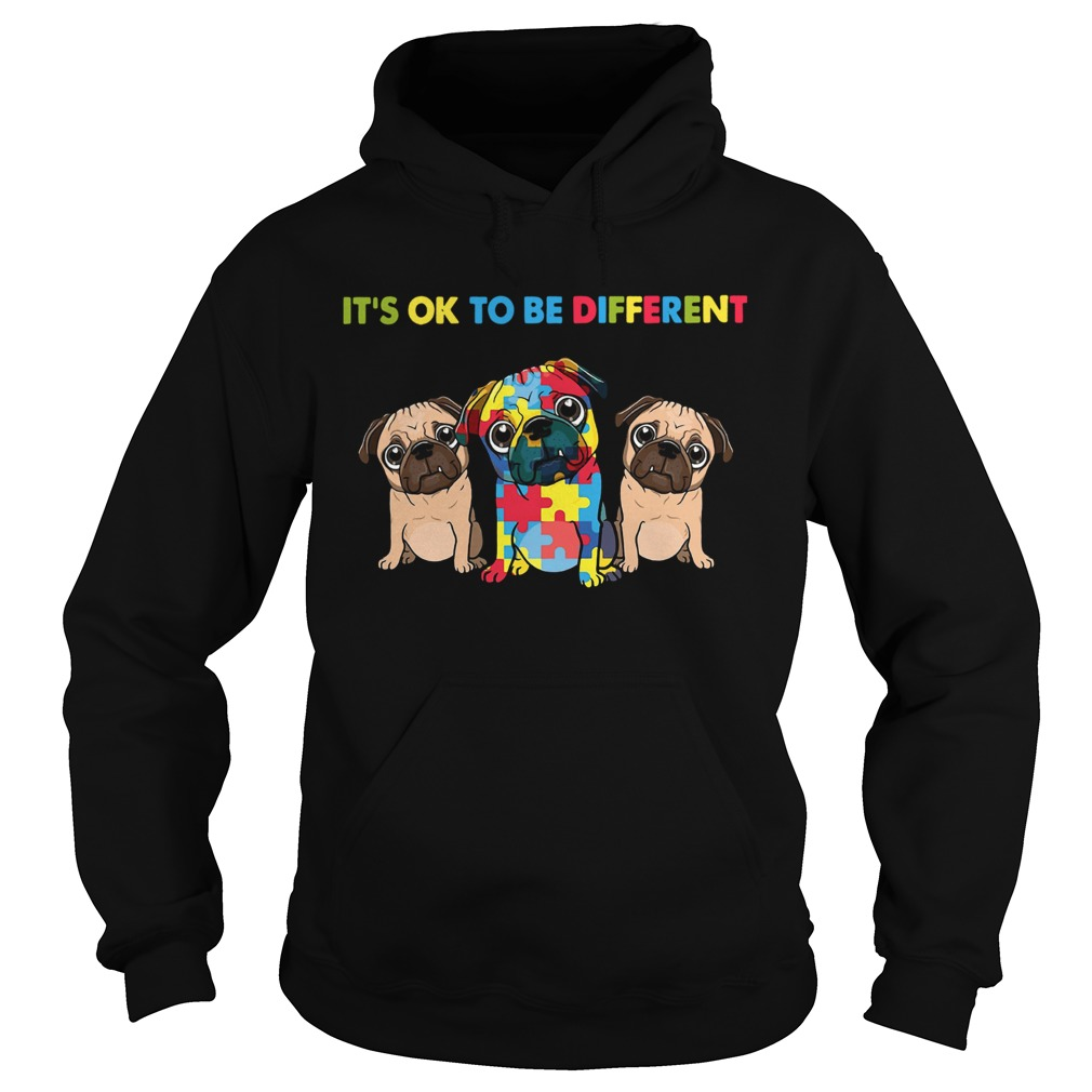 Pug Autism Its Ok To Be Different  Hoodie